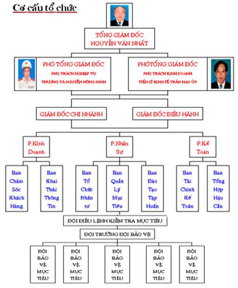 Cơ cấu tổ chức Công ty bảo vệ Đông Đô